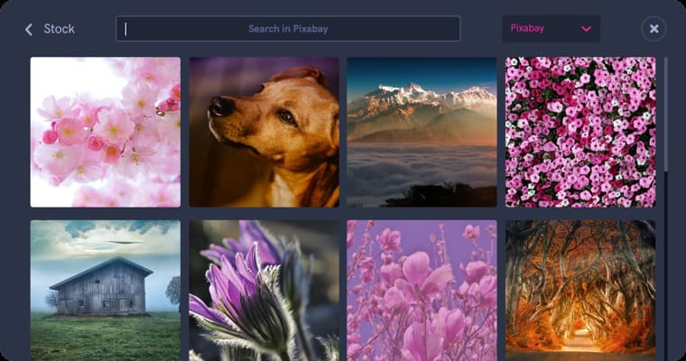 Search in Pixabay, photo stock, searching for a photo